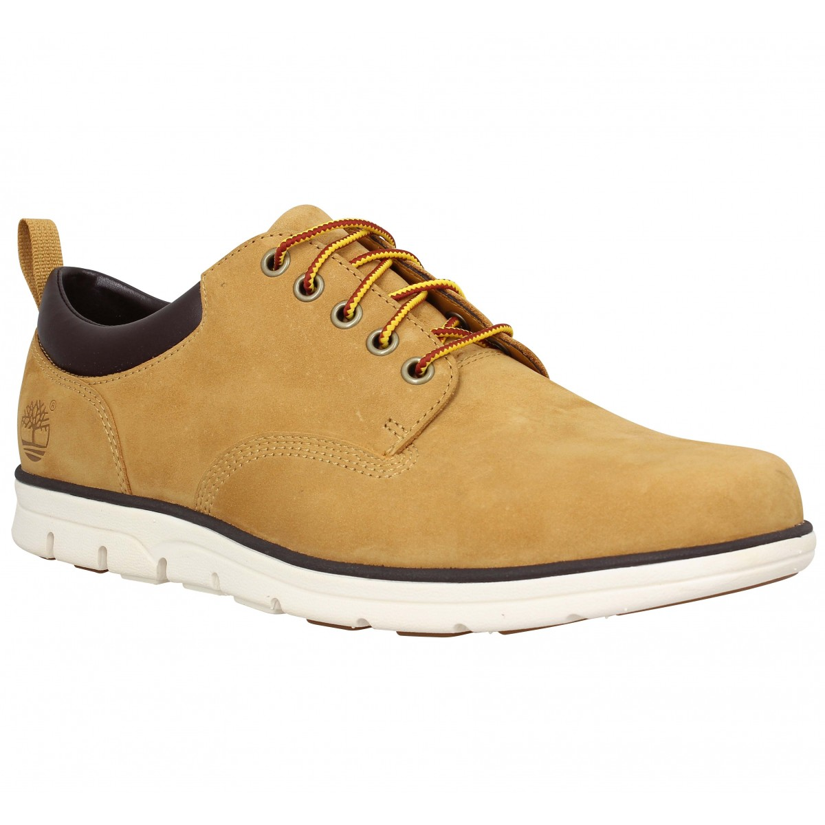 Baskets TIMBERLAND Bradstreet 5 eye Oxford velours Homme Ocre