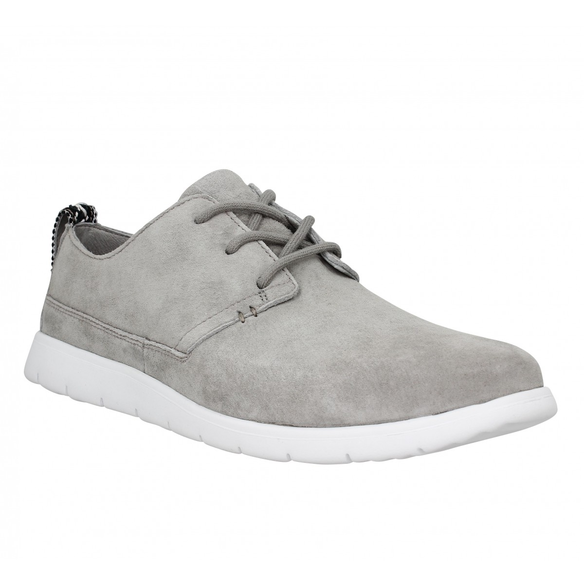 Baskets UGG AUSTRALIA Bowmore velours Homme Gris
